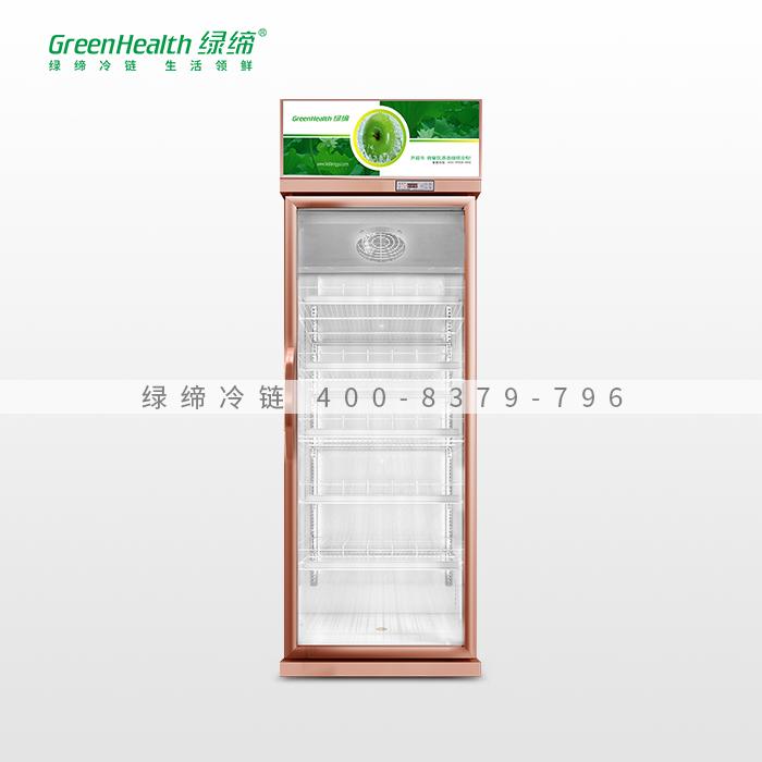 香槟色单门经济型冷藏柜